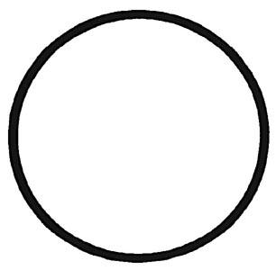 O-Ring Schwungrad Bild 1