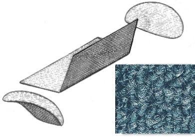 Innenraum Teppich Set hinten grau Bild 1