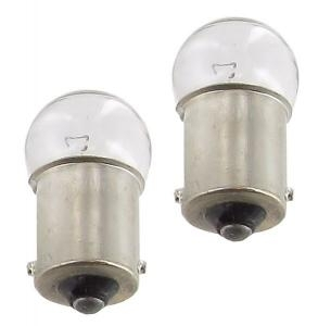 Glühbirnen Kennzeichenbeleuchtung 12V / 10W Bild 1